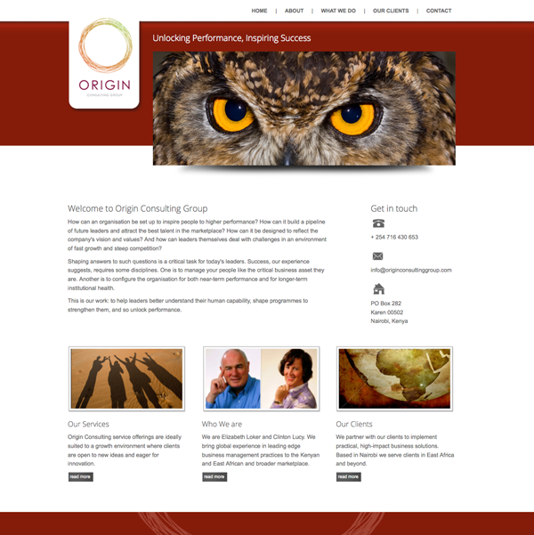 Origin Consulting Group Website Design
