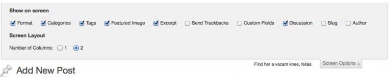 WordPress Screen Ooptions