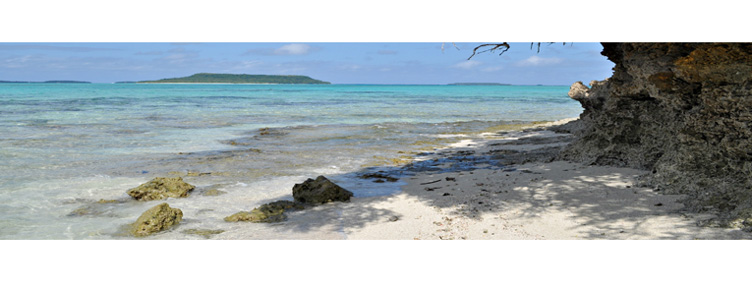 The Beach at Vava'u Tonga
