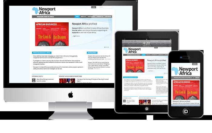 Newport Africa Corporate Website Design and WordPress Development
