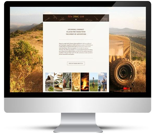 Website design for Go Wild Africa Safaris