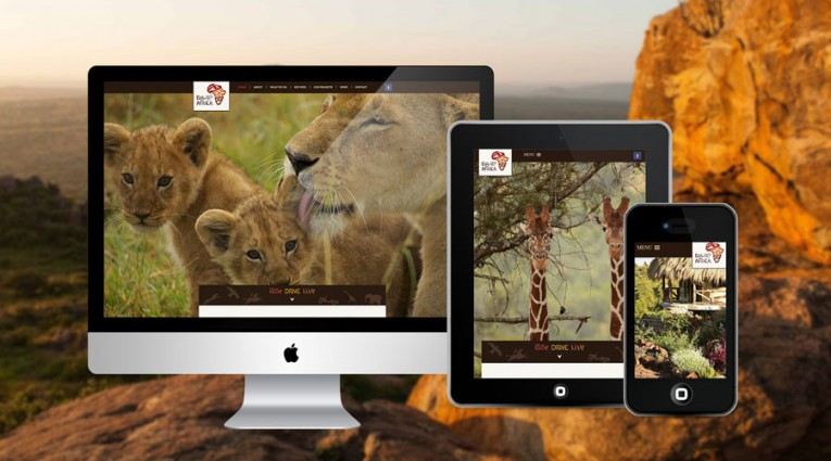 GoWild Mobile Responsive Design