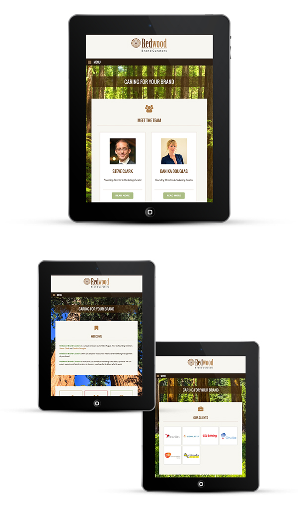 Mobile Responsive Design, looks great on iPad