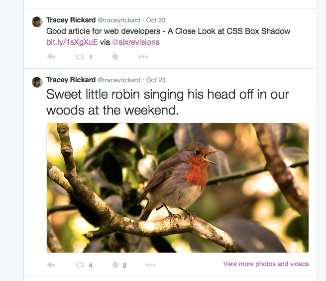 The Tweet with the Robin is shown in larger text