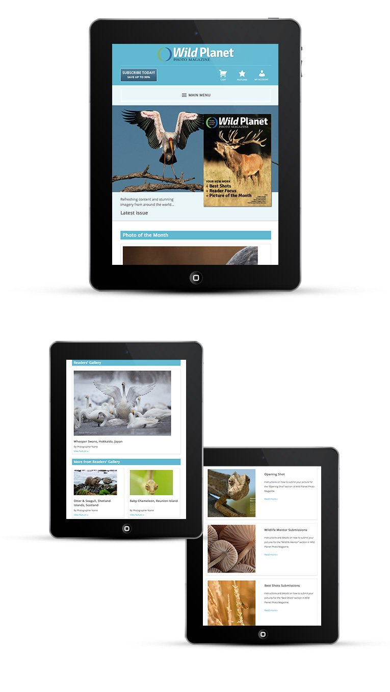 Mobile responsive design for photography magazine
