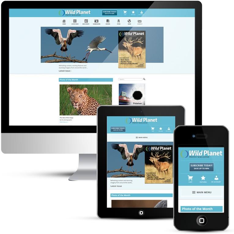 Mobile responsive WordPress design for online magazine