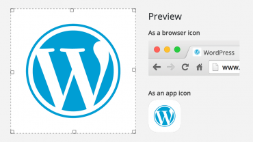 4.3-site-icon-customizer