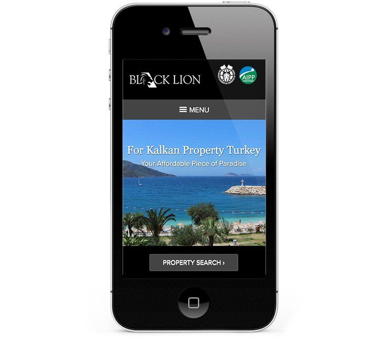 Responsive design for Black Lion shown on iPhone