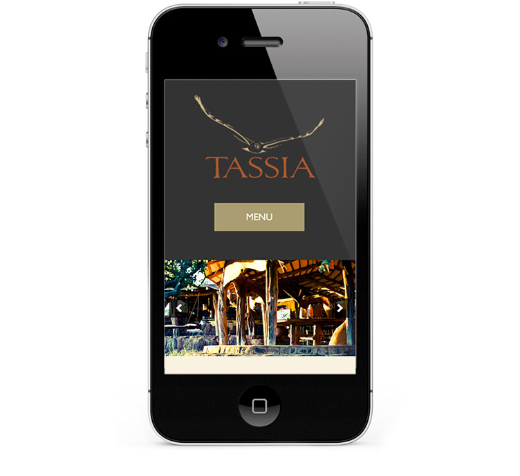 Mobile responsive web design for iPhones and Smartphones