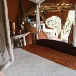 Custom Wordpress Design for Tassia Safaris