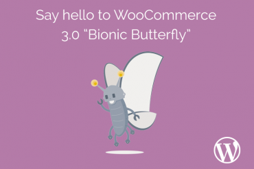 WooCommerce Version 3.0 WordPress