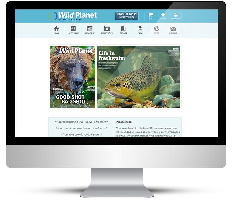 WordPress custom theme design for photography magazine