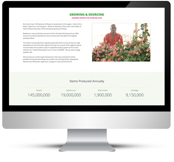 Freelance web design for the Flower Hub