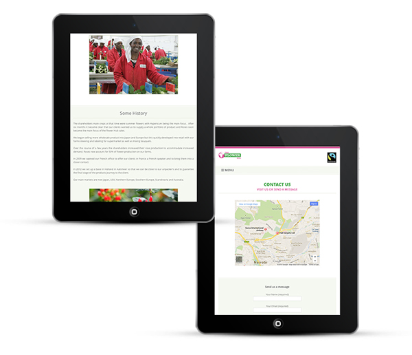 WordPress Design Responsive for IPads