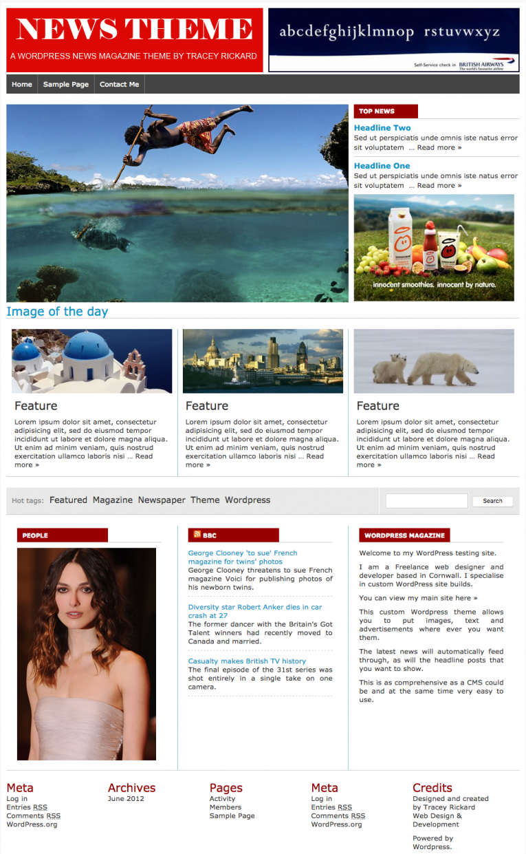 Wordpress design and development news theme