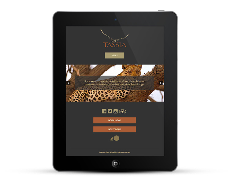 Mobile responsive web design for iPads and Tablets - Tassia
