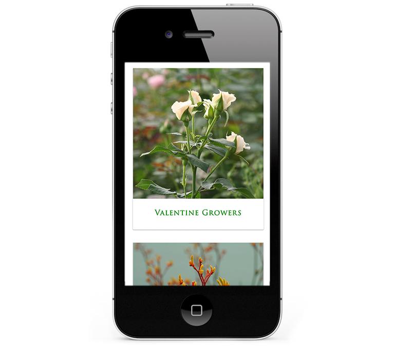 Beautiful web design for flower distributor