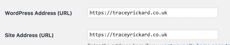 Updating WordPress for SSL