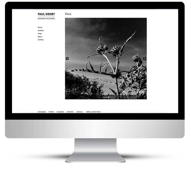 Beautiful clean responsive web design for photographer