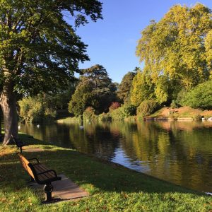 Stratford River