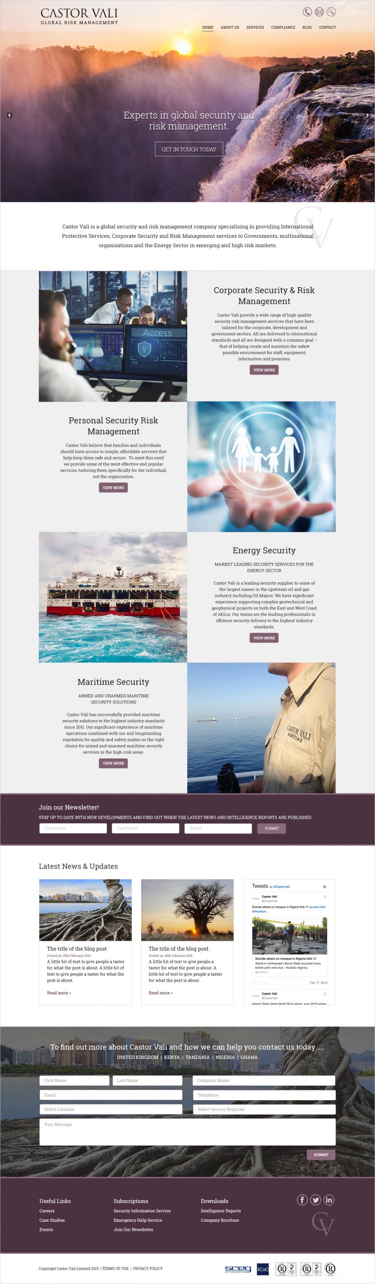 Castor Vali Home Page Design
