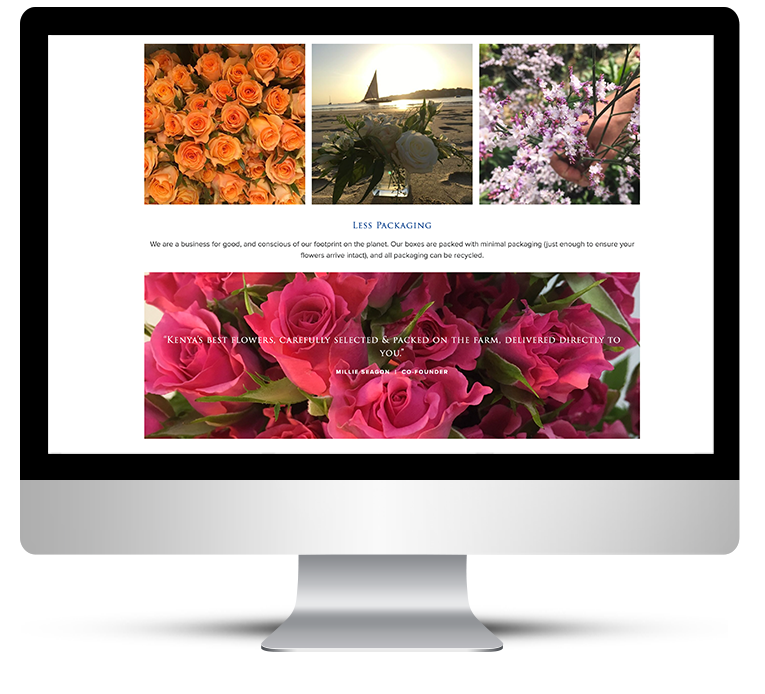 Beautiful Image Layouts for Safari Garden
